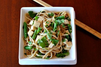 Asian Noodles with Green Beans Tofu & Green Onions