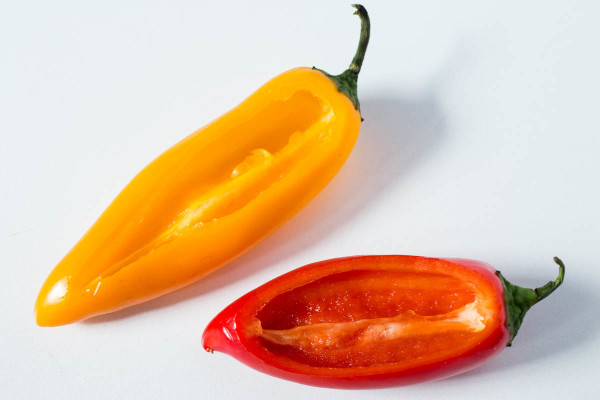 Mini Sweet Peppers Stuffed with Roasted Jalapeno Salsa by Parsley In My Teeth 7