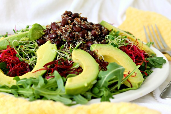 Clover & Red Beet Sprout Salad with Avocado Black Beans & Quinoa from Parsley In My Teeth
